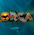 Orca в казино Вулкан