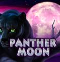 Игровой автомат на деньги Panther Moon