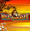 Wild Gambler в казино Вулкан Удачи