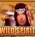 Дикий Дух в казино Вулкан