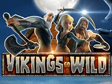 Игровой автомат Вулкан на деньги Wild Viking